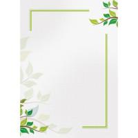 Dyplom Galeria Papieru 170 g/m2 Green 25ark.