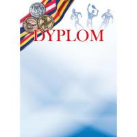 Dyplom Galeria Papieru 250g/m2 Olimpiada 20ark.