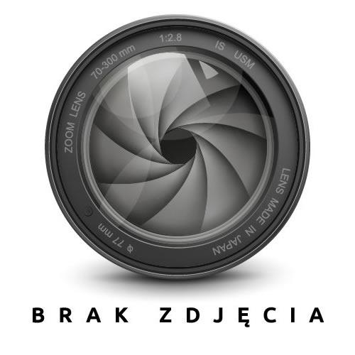 papier A3 80g do drukarki POLjet ryza papieru marki POL