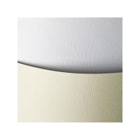 Papier ozdobny ARGO Borneo biały 220 g/m 20 ark.